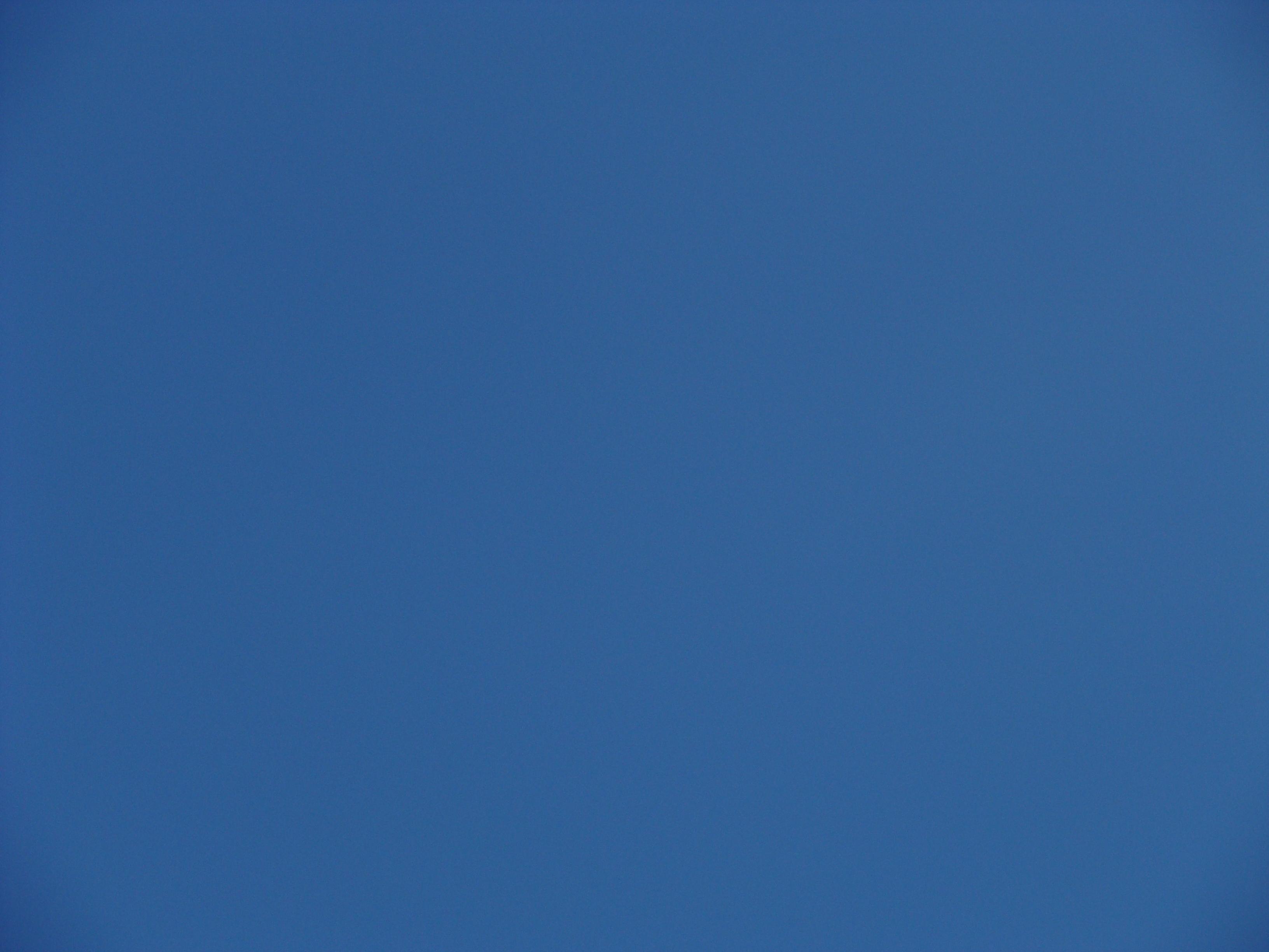 Blue is true knoopskalligrafie - Kleur blauwe verf ...